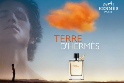 Hermes Terre dHermes - Дезодорант
