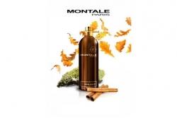 Montale Boise Fruite - Парфюмированная вода (тестер)