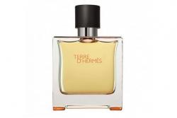 Hermes Terre dHermes - Парфюмированная вода (тестер)