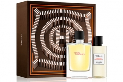 Hermes Terre D'Hermes - Набор (edt 100ml + sh/gel 80ml)